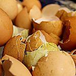 5 Möglichkeiten Eierschalen zu verwenden