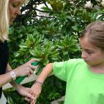 Wussten Sie, dass durch bestimmte Vitamine Stechmücken vertrieben werden?